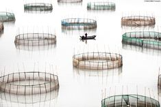 In Coastal Geometries, architect and photographer Tugo Cheng conjures minimalist compositions from the fishing nets and bamboo poles on the coast of Fujian. It is a world that's vanishing, since this vital culture is threatened by rapid development