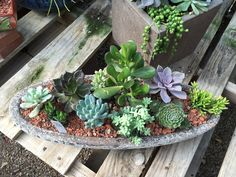 Succulent arrangement in stone container at Green Things