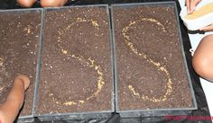 Gardening with Kids - Grow plants in shape of their first initials ~ Putti Prapanchakids-activities