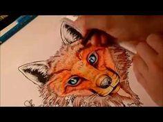 Animorphia - Fox (part 1)