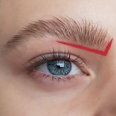 An unusual minimalistic red graphic liner eyelook with a natural bushy eyebrow - creative, artistic and editorial eye makeup art - eye makeup for blue eyes Creative Eye Makeup, Eye Makeup Art, Blue Eye Makeup, Bushy Eyebrows, Blue Eyes, Makeup Looks, Editorial, Natural, Artist