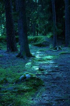 Blue Forest, Linkoping, Sweden