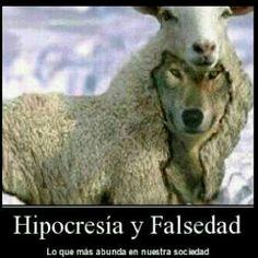 Hipocresía y falsedad