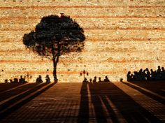 Meeting of Shadows Photograph by Denis Buchel, NatGeo Your Shot. Shadows converge on a sunny day in Istanbul, Turkey, in this National Geographic Photo of the Day from our Your Shot community. Shadow Images, Shadow Pictures, New Pictures, Cool Photos, Amazing Photos, Photography Courses, Photography Tips, Light And Shadow Photography, Rule Of Thirds