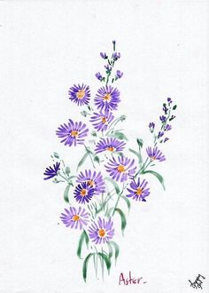 Flowers boquette tattoo aster ideas for 2019 Aster Tattoo, Aster Flower Tattoos, Birth Flower Tattoos, Flower Tattoo Designs, Tattoo Flowers, Aster Blume, September Birth Flower, Wreath Drawing, Birth Flowers
