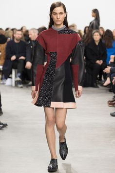 Brian Edward Millett - The Man of Style - Proenza Schouler fall 2014