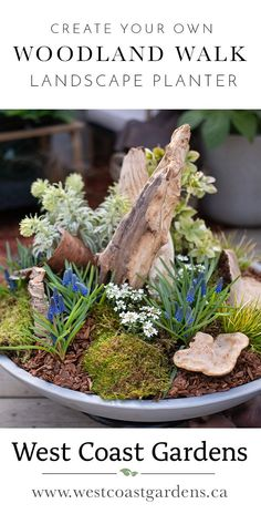 Bring your favourite woodland walk to your own yard by incorporating little pieces of nature, together with your favourite spring blooms, into this landscape planter!  #woodland #Planter #outdoorplanter #garden #containergarden
