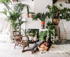 There are so many inspiring people out there, doing wonderful things. One of them is Manon Hanssen Meyering . Manon describes herself as a. Indoor Gardening Supplies, Rainbow Family, Boho Room, Second World, Make A Donation, Air Plants, Potted Plants, Inspired Homes, One Bedroom