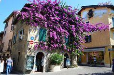 Jezioro Garda, Sirmione – jak przetrwać w tropikach