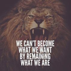 Best 30 Lion Motivational Quotes - Home Inspiration Short Inspirational Quotes, Motivational Quotes For Success, Great Quotes, Positive Quotes, Motivational Images, Awesome Quotes, Positive Thoughts, Wisdom Quotes, True Quotes