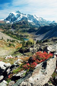 ✯ Fall Majesty - Mount Baker, Washington