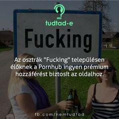 Bárcsak magyarországon is😂 Moka, Texts, Geek Stuff, Van, Humor, Funny, Quotes, Geek Things, Quotations
