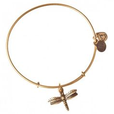 Dragonfly Charm Bangle Grace • Change • Power Characterized by quick, sudden movements and a powerful wing stroke, the dragonfly uniquely changes direction on a whim. Symbolizing transition, the dragonfly has impeccable vision, which is a reminder to open one's eyes to the beauty of life's journey. Embrace the graceful energy of the dragonfly to live life to the fullest and to appreciate Mother Earth's gifts.