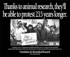Thanks to animal testing, people can protest 23.5 years longer because of the increased medical research. ICS