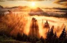 Las brumas y nubes bajas de la Montaña Lookout en el Estado de Washington, EE.UU. Foto de Michael Matti.