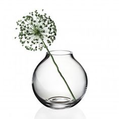 light innocence: Menu Glass Vase Ball clear - Classic spherical vase with a characteristic short and narrow neck that makes it easy to beautifully  arrange flower bouquets.