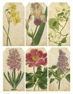 Set of 6 Spring botanical tags/bookmarks