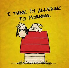 I think I'm allergic to morning!   --Peanuts Gang/Snoopy