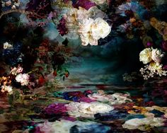 Photography by Isabelle Menin   http://ineedaguide.blogspot.com/2015/02/isabelle-menin.html #art #photography