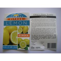 Find 5L Eureka Lemon Citrus at Bunnings Warehouse. Visit your local store for the widest range of garden products.