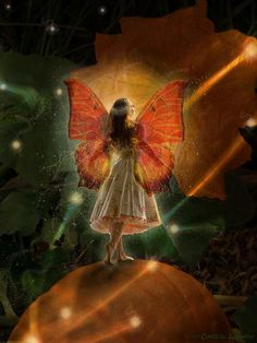 Halloween Pumpkin Fairy Princess by Into Creating, via Flickr