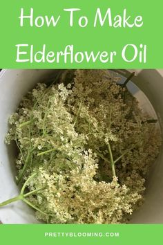 Making herb infused oils takes quite some time and patience but also very satisf. Making herb infu Herbal Tinctures, Herbalism, Herbal Remedies, Natural Remedies, Elderberry Recipes, Elderberry Benefits, Infused Oils, Flavored Oils, Patience