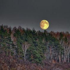 Moon - pixdaus