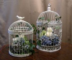 Birdcage Centerpieces with Hydrangea and Roses- like the ivy wrapped around the outside! Beach Wedding Centerpieces, Wedding Table, Wedding Decorations, Table Decorations, Wedding Reception, Carpenter Bee Trap, Bee Traps, Bird Cage Centerpiece, Deco Floral