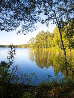 Current weather and hiking conditions in Nuuksio National Park in Vihti and Espoo, Finland. Updated every week with new photos from the national park. Greenland Travel, Nuuk Greenland, Finland Travel, Shore Excursions, Lake Forest, Helsinki, How To Take Photos, Great Places, The Good Place