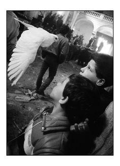 Letizia Battaglia. Two boys and a dove in Trapani, on the west coast of Sicily, 1989