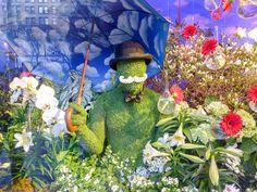Macy's Flower Show Lautrec, Stuff To Do, Things To Do, Flower Show, Art Museum, York, City, Spring, Flowers