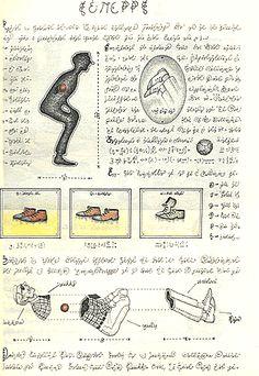 Luigi Serafini - Codex Seraphinianus - dissections