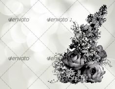 Beautiful flowers bokeh background with place for text 6