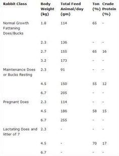 Rabbit Nutrition: The Numbers. Useful for formulating your own diet from local ingredients! All About Rabbits, Raising Rabbits For Meat, Meat Rabbits, Raising Goats, Rabbit Farm, Bunny Rabbit, Big Bunny, Rabbit Behavior, Flemish Giant Rabbit