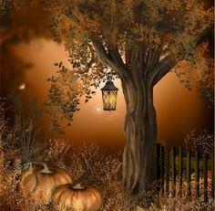 Otoño y Halloween ! Autumn and Halloween! Photo Vintage, Autumn Scenes, Fall Pictures, Fall Images, Halloween Art, Happy Halloween, Halloween Night, Halloween Pictures, Fall Harvest