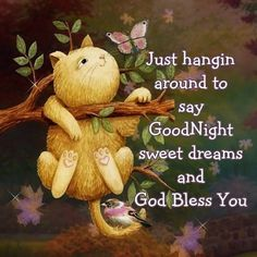 Good Night Annie,God Bless You sweet Friend. Love you with warm hugs  love Doreen