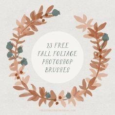 free brushes, photoshop, wreath, berries, cute brushes, foliage brushes,