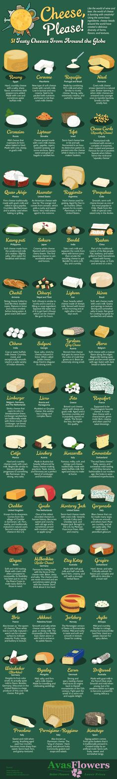 Cheese Please! 51 Tasty Cheeses From Around the Globe - http://Avasflowers.net - Infographic