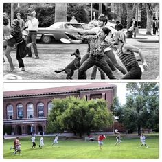 Warm weather has returned to #Tucson. Tossing a Frisbee around on the Mall has always been a popular activity at #UofA.