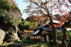 瑞泉寺 ~鎌倉の紅葉 Autumn leaves in Zuisenji Temple,Kamakura,Japan