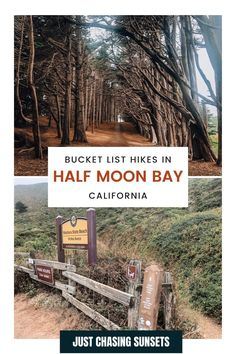 Take a day trip from San Francisco to Half Moon Bay for some great hiking! There are beautiful hiking trails in. Half Moon Bay California for every fitness level, each offering awesome ocean views or a hike through Redwood groves! Check out this post for all of the hiking details! Beautiful Places To Visit, Cool Places To Visit, Great Places, California Travel Guide, California Destinations, Cypress Tree Tunnel, Half Moon Bay California, Travel For A Year, Moss Beach