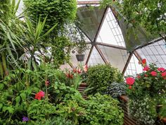 Inside a Grow Dome Greenhouse Unlike some solar greenhouse kits, the Growing Dome® geodesic greenhou