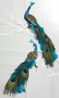 Google Image Result for http://lovelythings.typepad.co.uk/photos/uncategorized/2008/10/22/peacockdecoration_2.jpg