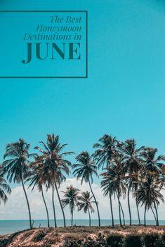 Trinidad and Tobago Caribbean Palm Tree Surfing Trendy Souvenir Travel Luggage Tag 2-Pack
