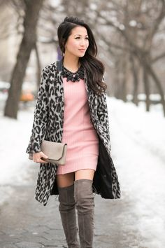 Snow Leopard :: Rose dress & Grey tall boots