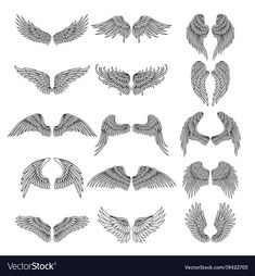 4b798c92d Tattoo design pictures of different stylized wings vector image on  VectorStock