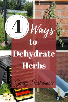 """Gardening Herbs 4 Ways to Dehydrate Herbs - Herbs bring flavor and personality to our meals and are totally worth preserving! Check out Ways to Dehydrate Herbs""""! Organic Gardening, Gardening Tips, Sustainable Gardening, Vegetable Gardening, Natural Garden, Natural Life, Natural Health, Growing Herbs, Medicinal Herbs"""