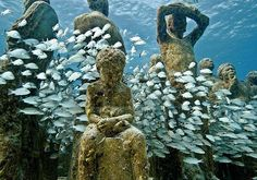 Jason de Caires Taylor, Underwater Garden Sculpture.  As an artist, Jason is interested in public art and how objects change in response to their enviroment.  He also wants to communicate how human interaction with nature can be positive.