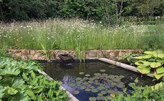 Marcus Green Horticultural Design, Northamptonshire Village Garden
