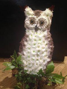 A flower Owl.